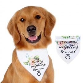 Kutya csokor nyakkendő és kendő
